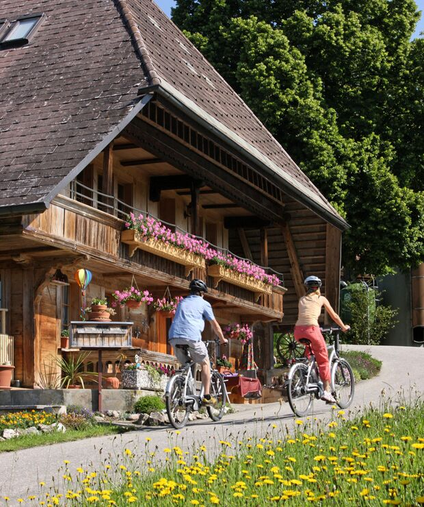 Bern_Advertorial_E-Bike_Emmental_Region_Bern_2 (jpg)