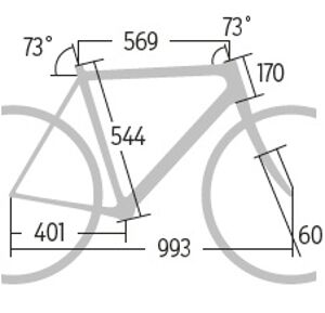 RB-0515-Carbon-1600-Test-Giant-Propel-Advanced-1-LTD-Geometrie-RB (jpg)