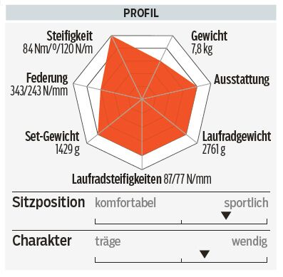 RB_0916_Test_2017_Rennraeder_Giant-TCR-Advanced-Pro-Disc-Profil (jpg)