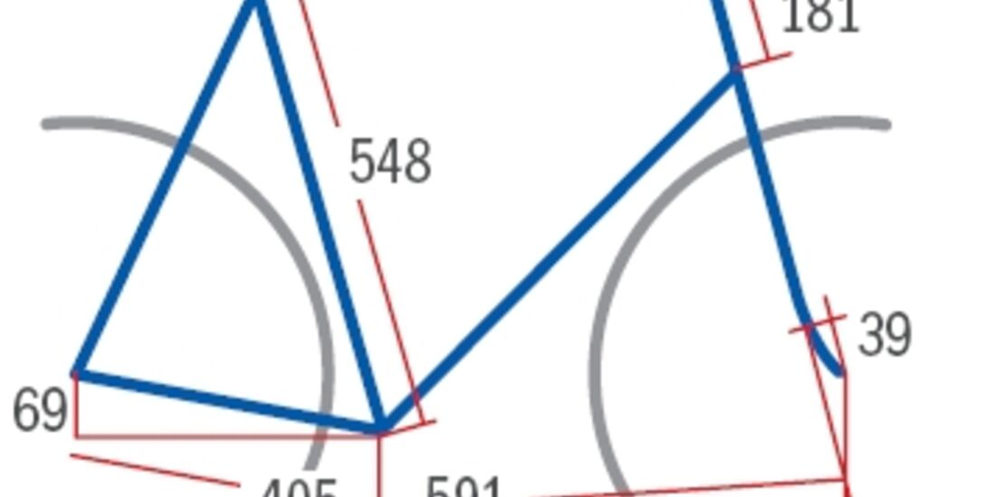 RB Canyon Ultimate CF SLX Red Geometrie