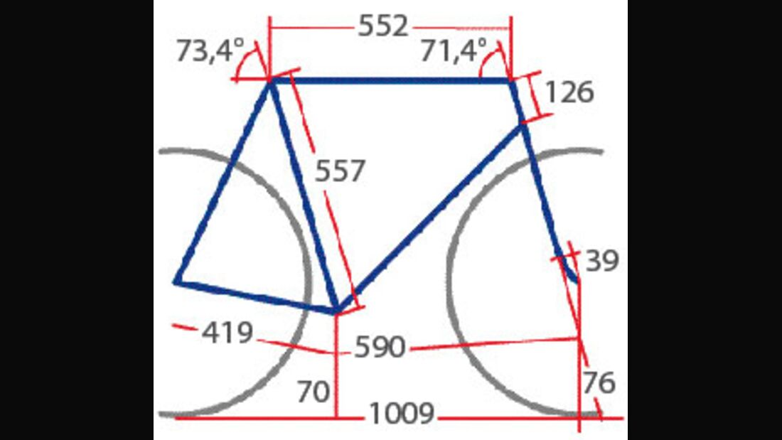 RB Focus Cross Pro Geometrie