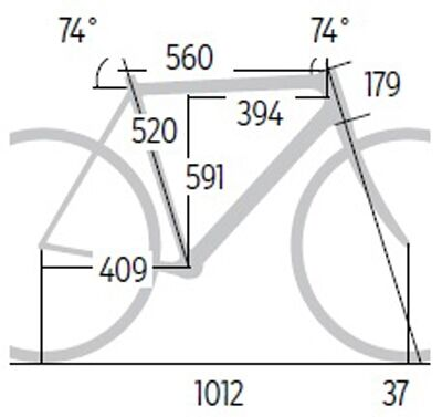 rb-0317-cube-attain-gtc-sl-disc-geometrie-roadbike (jpg)
