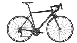 rb-0718-radtest-um-1000-bhf-rose pro-sl-105-bike-now (jpg)