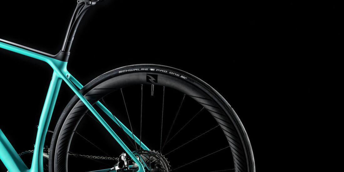 rb-2017-canyon-endurace_wmn_cf_sl_disc_rear_triangle-2.jpg