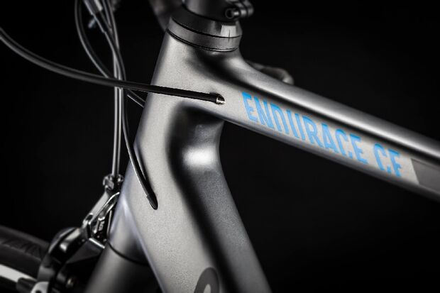 rb-Canyon-Endurace-CF-2014-06 (jpg)